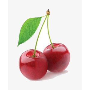 processing technology Fruit